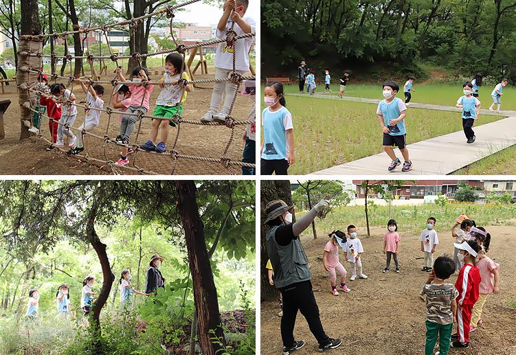 유아 숲체험 프로그램 사진